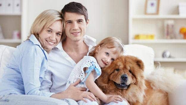 Wills & Trusts dog-young-family Direct Wills Garston